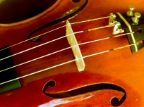 violin-in-detail-2-1418385