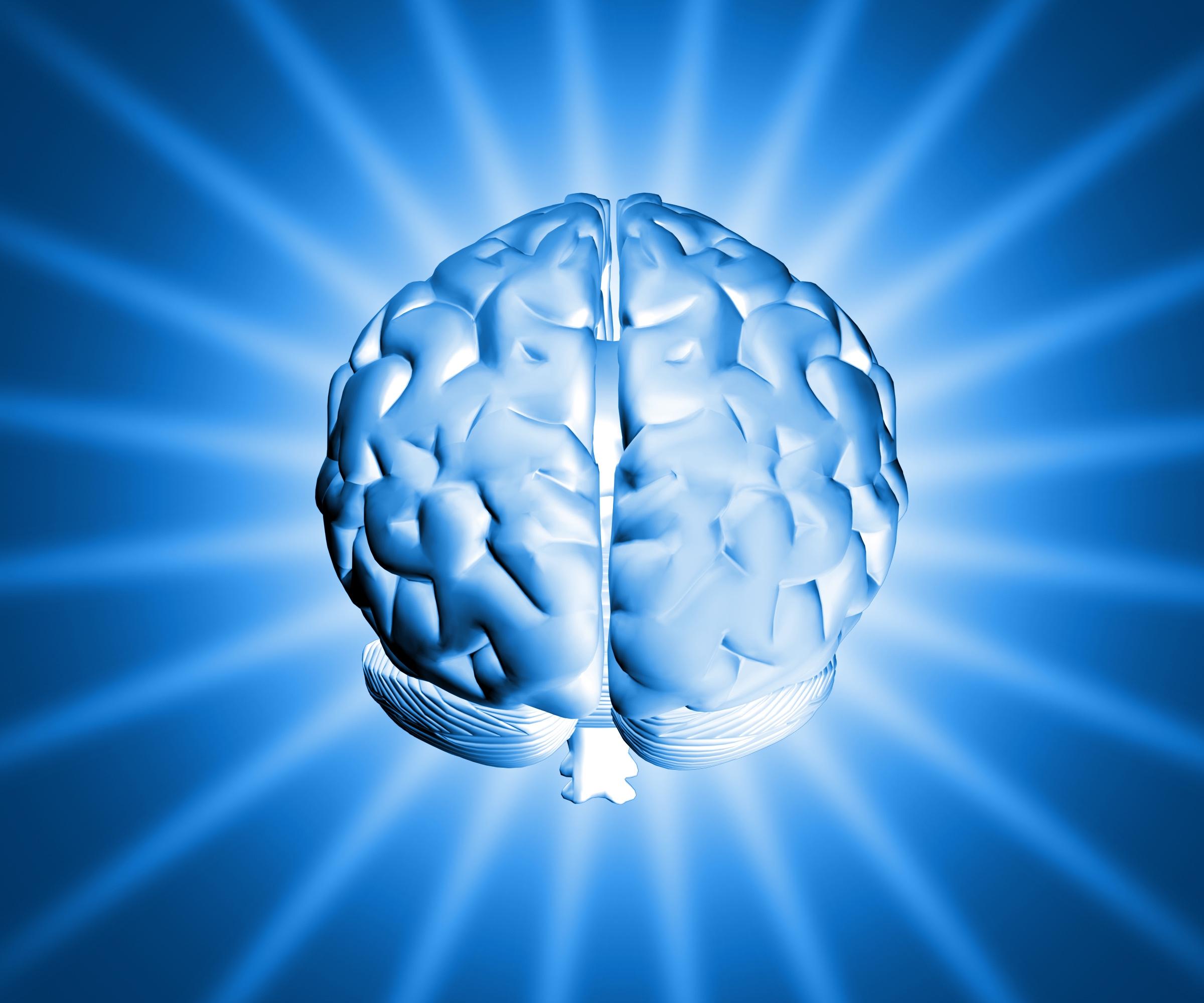 shiny-brain-1150907-1