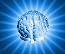 shiny-brain-1150907-1