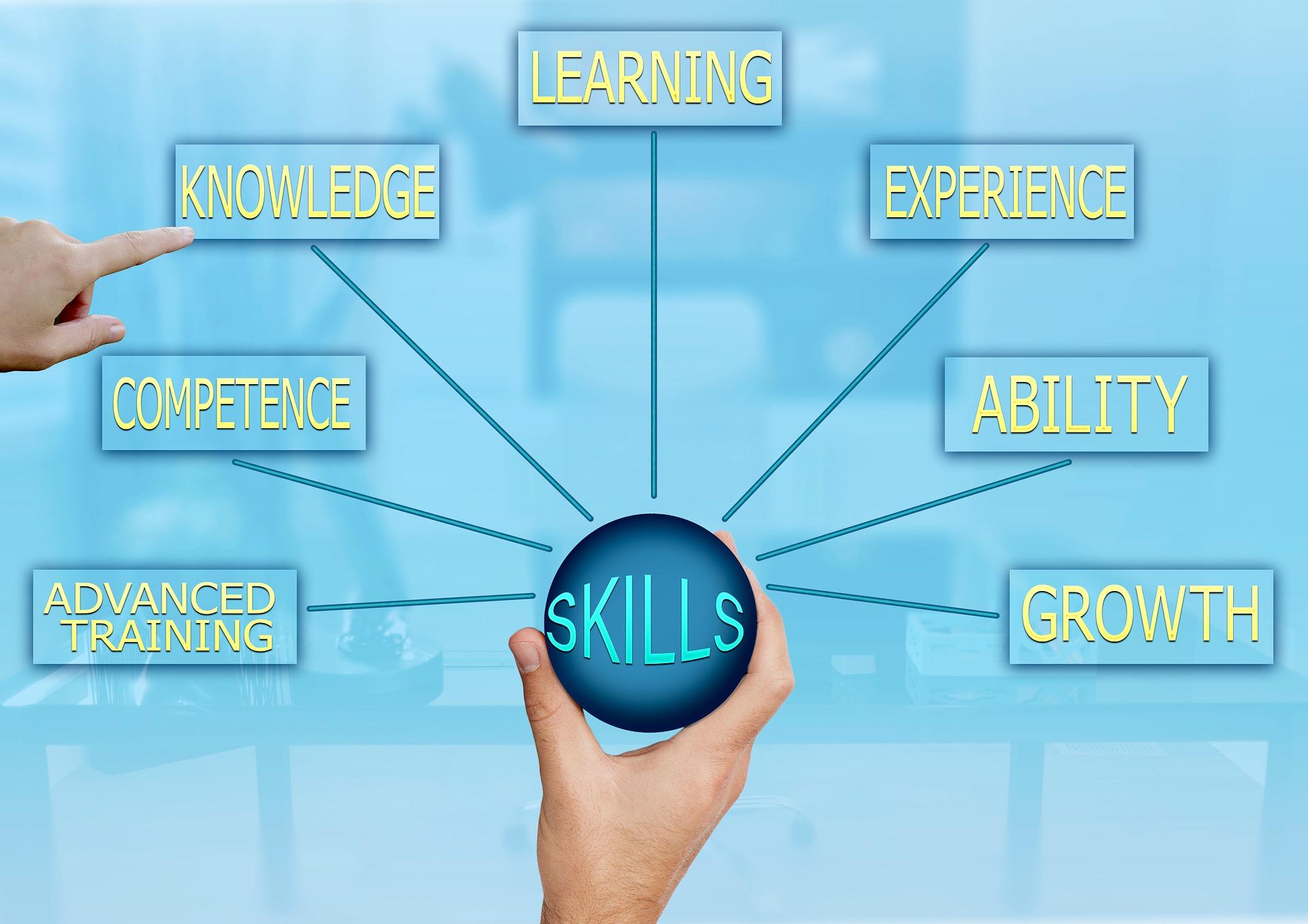 skills-3262172_1920_diwou
