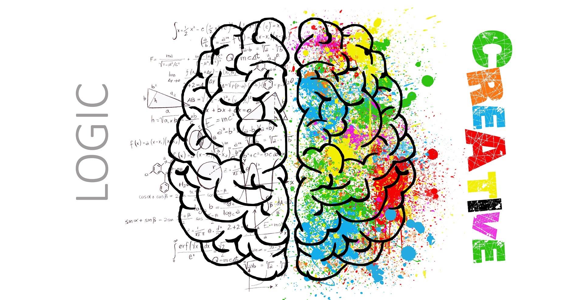 brain-2062055_1920_ElisaRiva