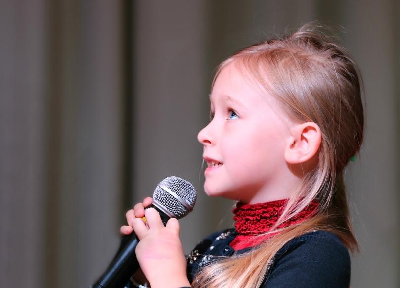 microphone-1804148_1920_klimkin2