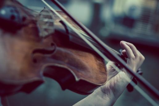violin-374096_1920_niekverlaan