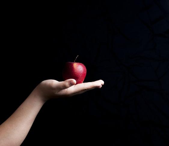 apple-464182_1920_lukaszdylka