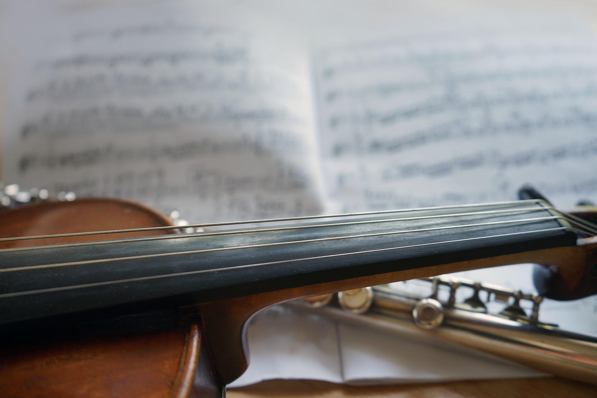 violin-3621667_1920_horndesign