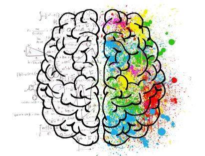 brain-2062057_1920_ElisaRiva2.jpg