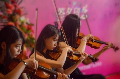 fiddler-935375_1920_jiawei333